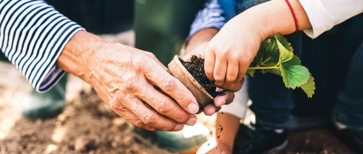 L'autunno è arrivato, prepariamo orti e giardini