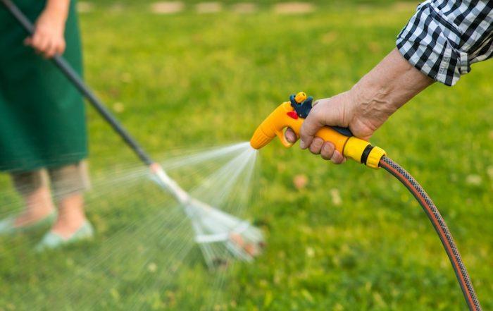 Quando e quanto irrigare per un giardino bello e sano