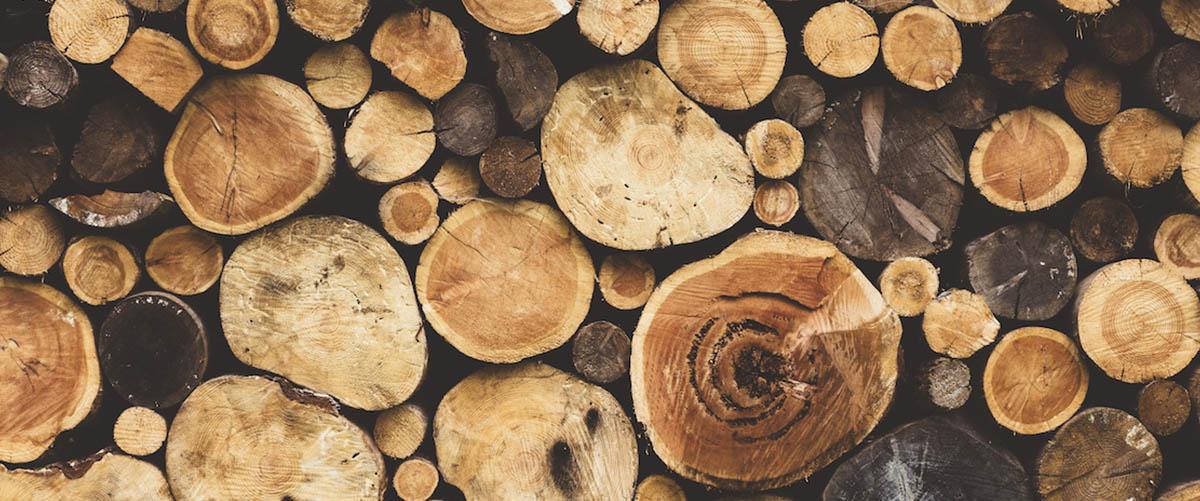 i difetti del legno che devi saper riconoscere